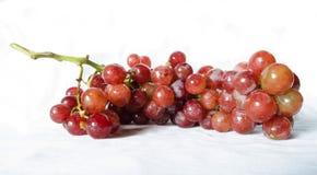 Uvas frescas Fotos de archivo libres de regalías