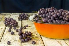 Uvas frescas azules en cuenco anaranjado del metal Fotografía de archivo libre de regalías