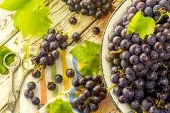 Uvas frescas azules en cuenco anaranjado del metal Fotos de archivo libres de regalías