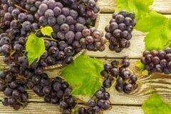 Uvas frescas azules en cuenco viejo del metal Fotografía de archivo libre de regalías