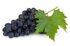 Uvas frescas com waterdrops Fotografia de Stock