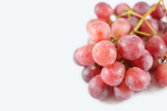 Uvas frescas no fundo branco Imagens de Stock Royalty Free
