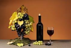 Uvas frescas y una botella de vino rojo Imagen de archivo libre de regalías