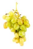 Uvas isoladas no fundo branco Foto de Stock