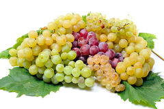 Uvas isoladas no fundo branco Fotos de Stock Royalty Free