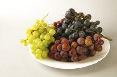 Uvas jugosas o un marco con la uva en el blanco Imagen de archivo libre de regalías