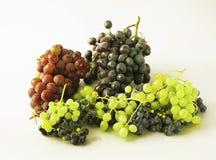 Uvas jugosas o un marco con la uva en el blanco Fotografía de archivo libre de regalías