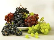 Uvas jugosas o un marco con la uva en el blanco Imagen de archivo