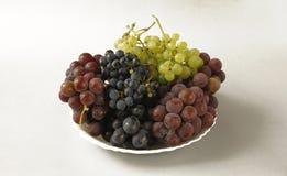 Uvas jugosas o un marco con la uva en el blanco Fotos de archivo
