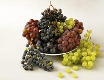 Uvas jugosas o un marco con la uva en el blanco Imagenes de archivo