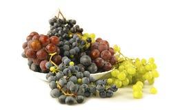 Uvas jugosas o un marco con la uva en el blanco Fotografía de archivo