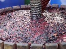 Uvas machacadas negro almacen de metraje de vídeo