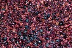 Uvas machacadas para el fondo del vino Fotos de archivo