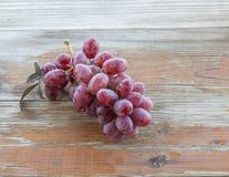 Uvas maduras de la vid Fotos de archivo libres de regalías