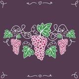 Uvas maduras decorativas desenhados à mão na videira Fotografia de Stock Royalty Free