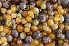 Uvas mezcladas coloridas imágenes de archivo libres de regalías
