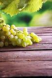 Uvas nas folhas de madeira da tabela e da uva Uvas para vinho saudáveis de fruto fresco Fotografia de Stock