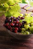 Uvas nas folhas de madeira da tabela e da uva Uvas para vinho saudáveis de fruto fresco Fotos de Stock
