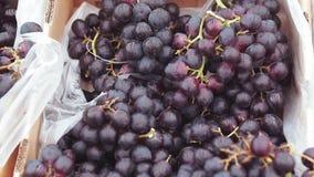 Uvas negras en el mercado almacen de video