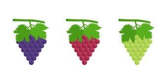 Uvas negras, rojas y verdes Foto de archivo