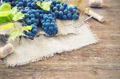 Uvas no ajuste do vintage com cortiça na tabela de madeira Imagem de Stock Royalty Free