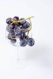 Uvas no copo Fotos de Stock Royalty Free