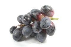 Uvas oscuras, orgánicas y frescas Imagen de archivo