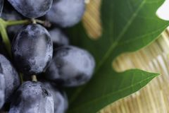 Uvas púrpuras frescas en cesta Tan apetitoso e irritable foto de archivo