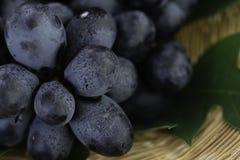 Uvas púrpuras frescas en cesta Tan apetitoso e irritable imagenes de archivo