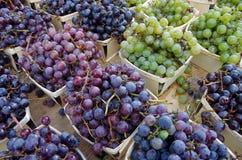 Uvas para vinho nas cestas de madeira indicadas para o mercado foto de stock