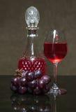 Uvas para vinho saborosos antes da colheita Imagem de Stock Royalty Free