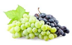 Uvas pretas e verdes com folha Imagem de Stock Royalty Free