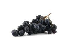 Uvas pretas frescas Imagens de Stock