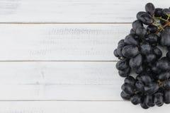 Uvas pretas frescas Imagem de Stock