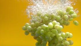 Uvas que espirram na água video estoque