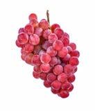 Uvas rojas aisladas en el fondo blanco Imagenes de archivo