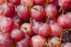 Uvas rojas como fondo muy bonito de la fruta Imagen de archivo