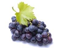Uvas rojas con las hojas aisladas en el fondo blanco Foto de archivo