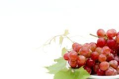 Uvas rojas con las hojas frescas, aisladas en el Ba blanco Fotos de archivo