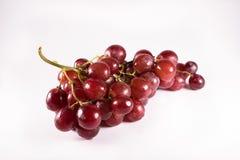 Uvas rojas con los tallos aislados en el fondo blanco Fotos de archivo libres de regalías