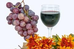Uvas rojas con un vidrio de vino Imagen de archivo