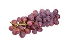 Uvas rojas en un fondo blanco Fotos de archivo libres de regalías