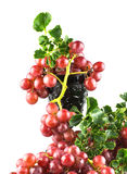 Uvas rojas maduras con el aislante de cristal Fotos de archivo libres de regalías