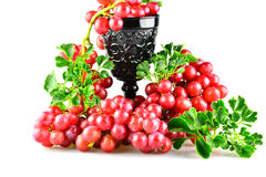 Uvas rojas maduras con el aislante de cristal Imágenes de archivo libres de regalías