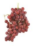 Uvas rojas sin semillas Fotos de archivo libres de regalías