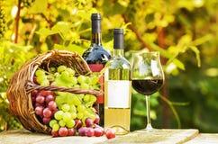 Uvas rojas y blancas fotos de archivo