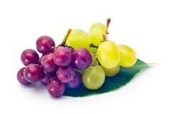 Uvas rojas y verdes Fotografía de archivo libre de regalías