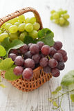 Uvas rojas y verdes Foto de archivo libre de regalías