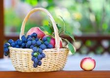 Uvas saborosos e maçãs na cesta no gazeb Foto de Stock