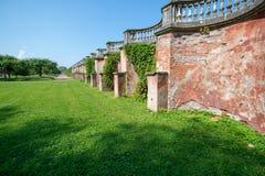 Uvas selvagens cobertos de vegetação da parede de tijolo fotografia de stock